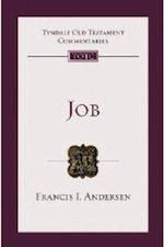 Andersen Job