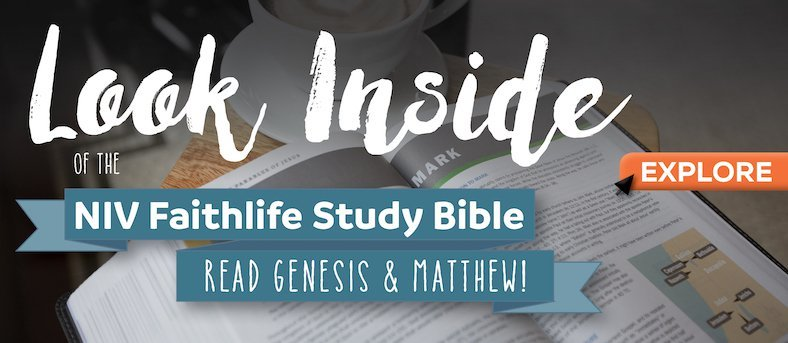 The Importance of Staying Curious in Bible Study