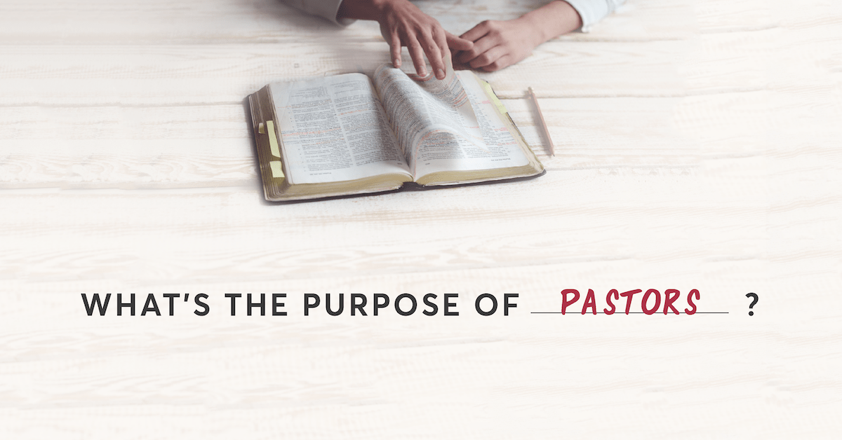 Reformed Theology What's the Purpose of … Pastors?  Calvinism