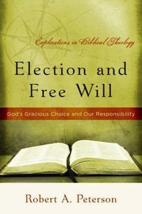 Book Review – Election and Free Will