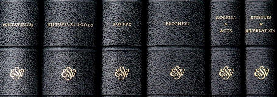 Review: ESV Reader's Bible, Six-Volume Set - Tim Challies