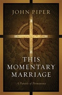 Book Reviews – This Momentary Marriage & Velvet Steel