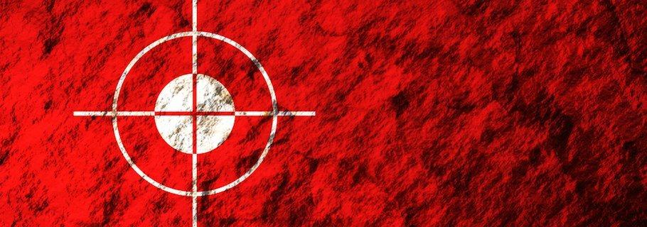 In the Crosshairs of the Discernment Bloggers